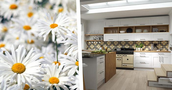 Linda Barker  Shaker Kitchen in Super White Eggshell
